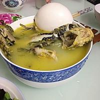 清炖嘎鱼汤的做法图解4