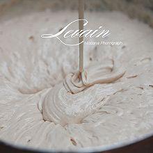 天然酵母-鲁邦种levain