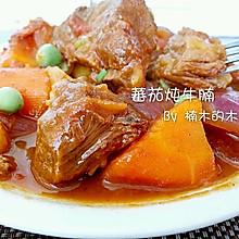 番茄炖牛腩~土豆胡萝卜洋葱~超详细步骤~好嚼入味