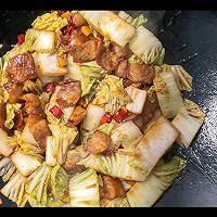 猪肉白菜炖粉条的做法图解8