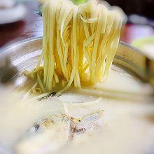 营养美味鱼汤面