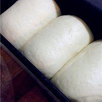 基础面包--牛奶吐司的做法图解9