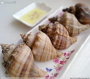 海螺怎样吃才正确图解