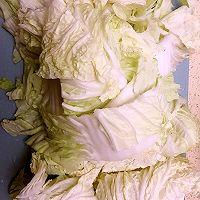 猪肉白菜包子(比食物更温暖的是人心)的做法图解3