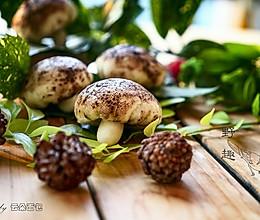 芋泥蘑菇包——假装在森林的做法