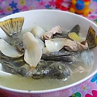 百合金鲴立鱼汤