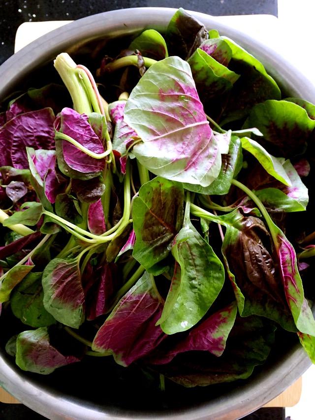 —椒油蒜泥苋菜#夏日素食#的做法图解1