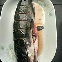 豉蒸钳鱼的做法图解1