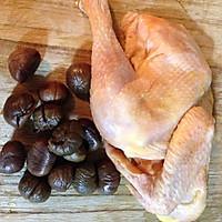 栗子烧子鸡的做法图解1
