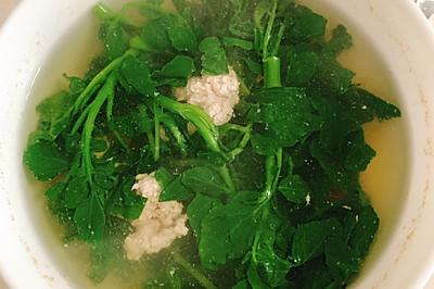 西洋菜肉末汤