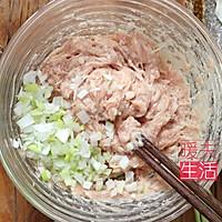 鲜肉鲜虾馄饨 云吞的做法图解5