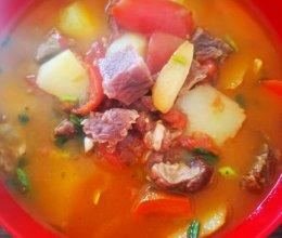❤️西红柿炖牛肉的做法