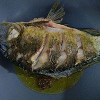 红烧鲫鱼#金龙鱼营养强化维生素A  新派菜油#的做法图解6