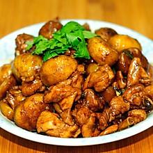 红烧板栗鸡块 金秋时节最应季的家常菜