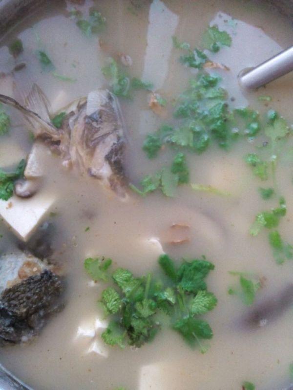 香菇豆腐鱼头汤的做法
