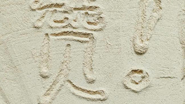 孩子长高的秘诀——自制天然虾粉的做法