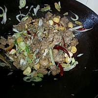 干锅鸭肉的做法图解8