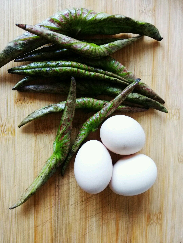 荷叶炒鸡蛋的做法步骤