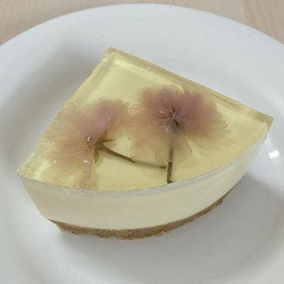 樱花酸奶冻芝士蛋糕