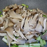 青蒜肉片炒鲜蘑的做法图解10