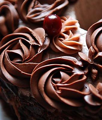 巧克力奶油花的做法