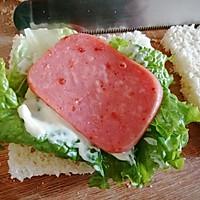 #夏日消暑,非它莫属#早餐三明治的做法图解5