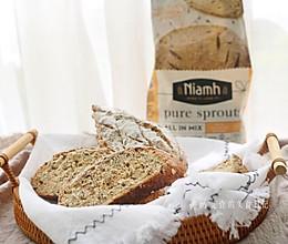 只需加水的超省心谷物面包 #Niamh一步搞定懒人面包#的做法