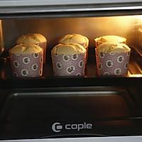 原味戚风纸杯蛋糕(烤箱做纸杯蛋糕)的做法图解14