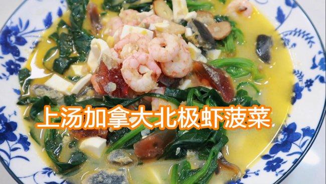红绿搭配的家常菜,上汤加拿大北极虾虾菠菜的做法