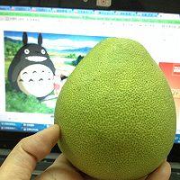 柚子龙猫的做法图解1
