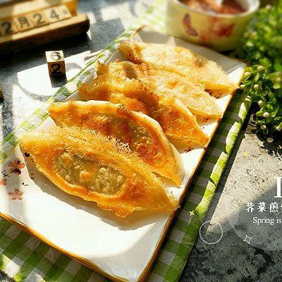 猪肉荠菜煎饺
