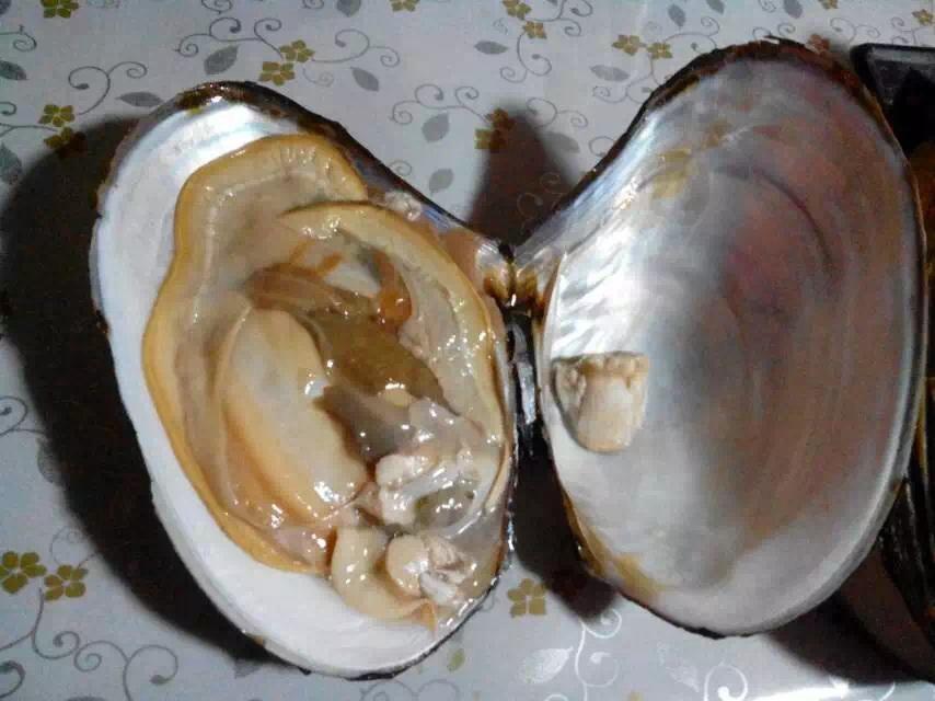 河蚌韭菜盒子(美味保健)圖片