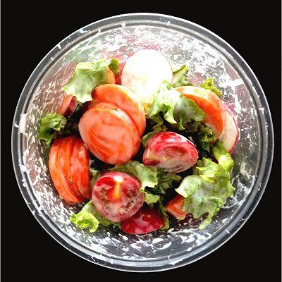 减肥的酸奶蔬菜沙拉