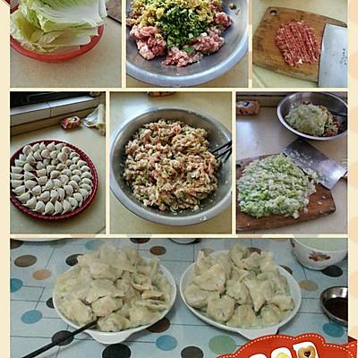 白菜猪肉馄饨的做法 步骤1