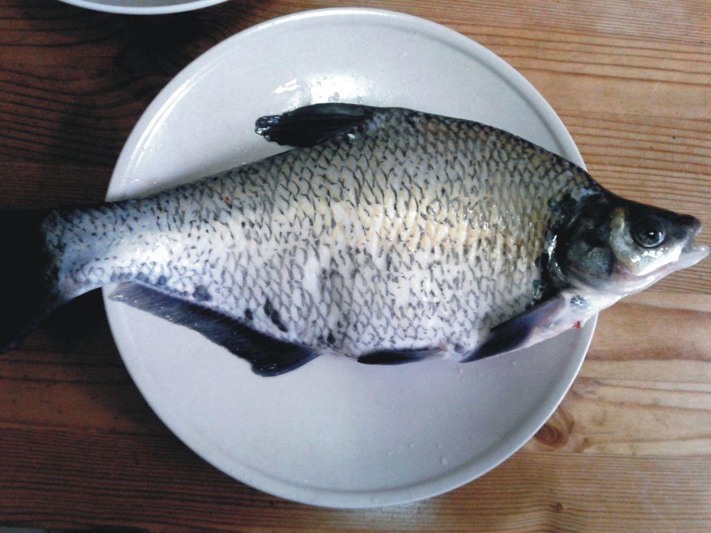 家常红烧鳊鱼的做法图解1