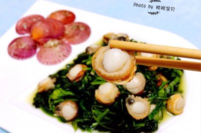 菠菜拌扇貝