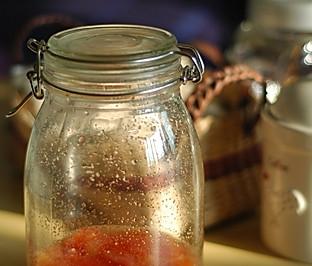 番茄酵母菌
