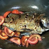 红烧鱼的做法图解11