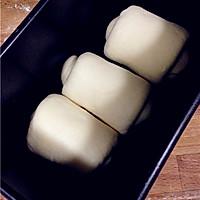基础面包--牛奶吐司的做法图解8