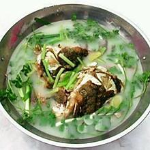 清炖鱼-.-美味鱼系列