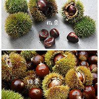 栗子季必知(剥栗子壳的6种方法&辩认好吃的栗子)的做法图解6