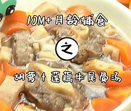 胡萝卜莲藕牛尾汤的做法