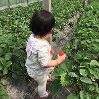 草莓彩虹千层蛋糕(追逐天空之美)的做法图解22