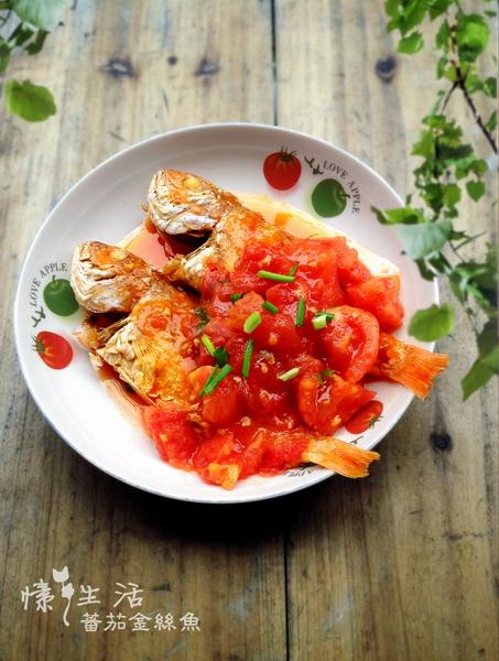家常菜:西红柿做法鱼的金丝枸可以与罗汉果一起煮吗图片