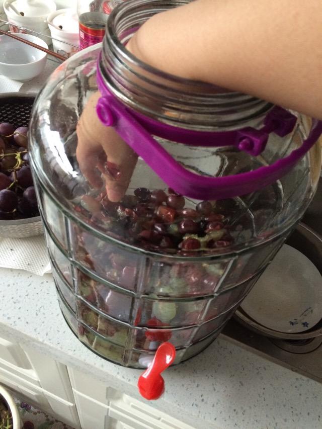 葡萄酒制作的做法步骤 1.
