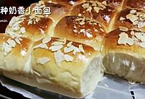 汤种奶香小面包的做法