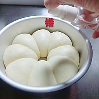 浅谈做面包的步骤和细节(5发酵)的做法图解2