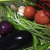 西红柿油菜