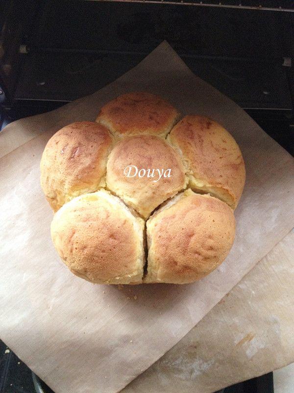 墨西哥全麦面包的做法