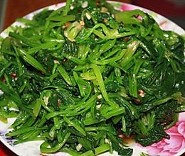 拌菠菜的做法